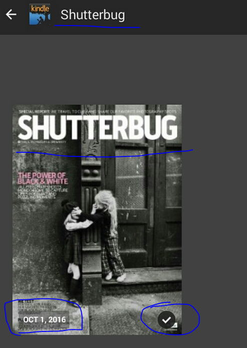 shutterbug_primereading